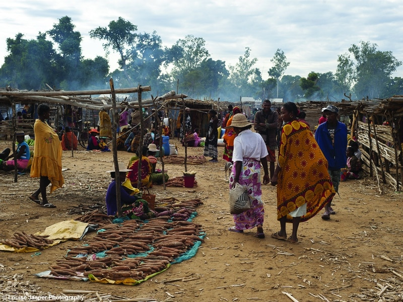 market visit_activity_mandrare river camp_luxury travel_south east_madagascar